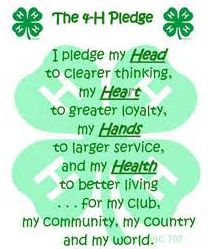 4-H pledge over clover graphic