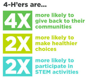 Infographic of 4-H Youth skills