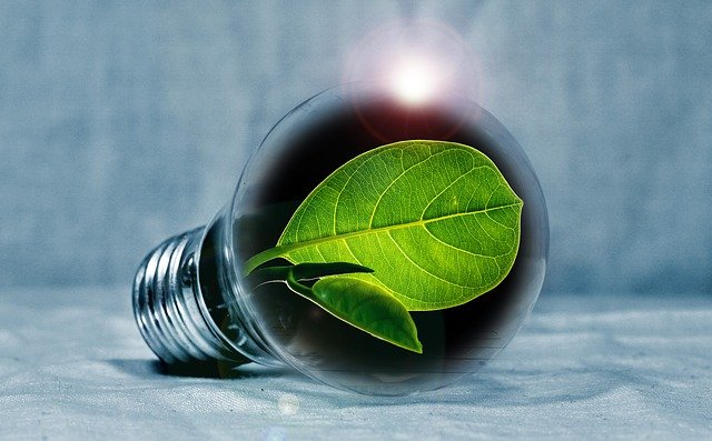 Light bulb with leaf inside symbolizing green energy
