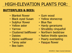 High elevation plant list for butterflies and bee habitat