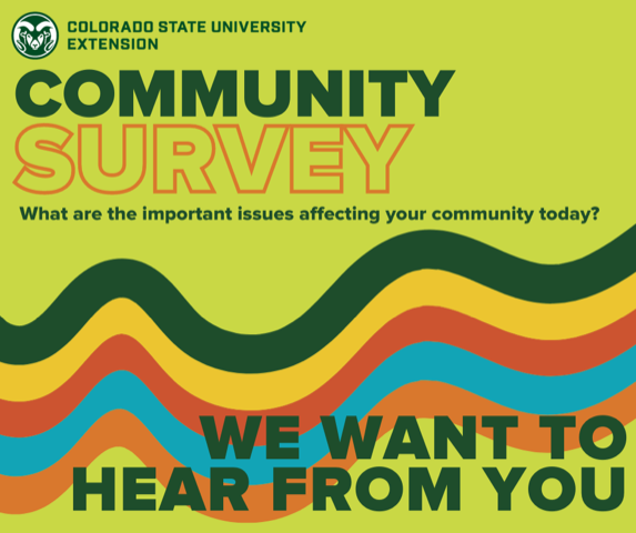 Geometric image inviting users to click to participate in the Community Survey to share about issues affecting your community.
