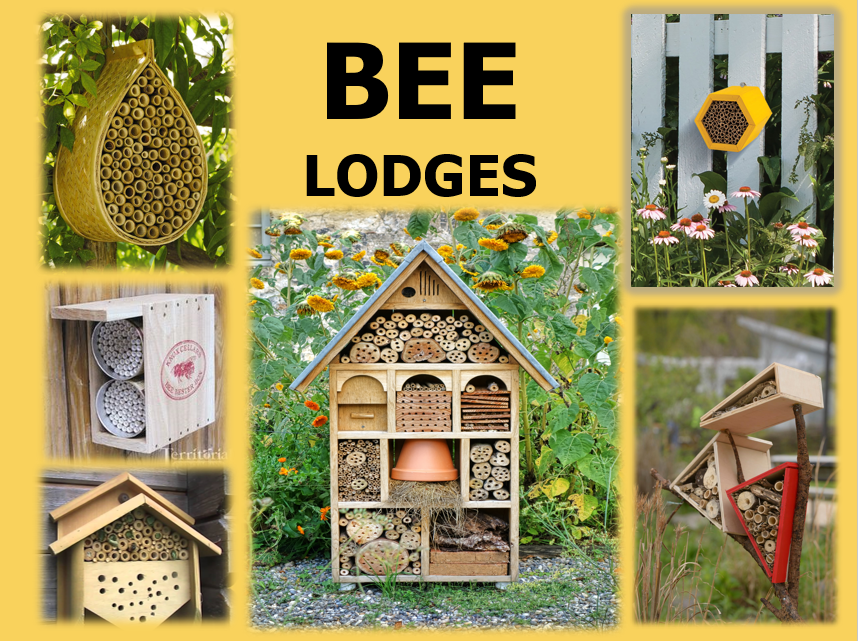 Title Bee Lodges and pictures of different lodges for solitary mason and leafcutter bees